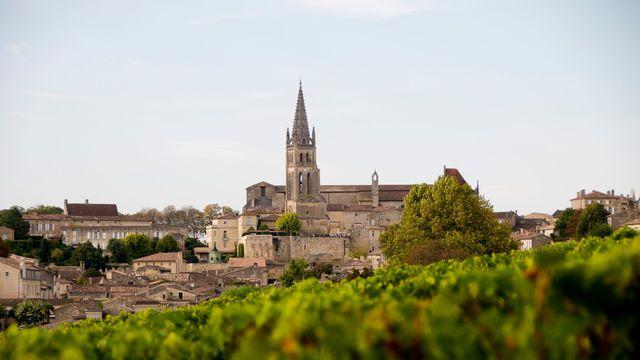 Vente de vins de bordeaux